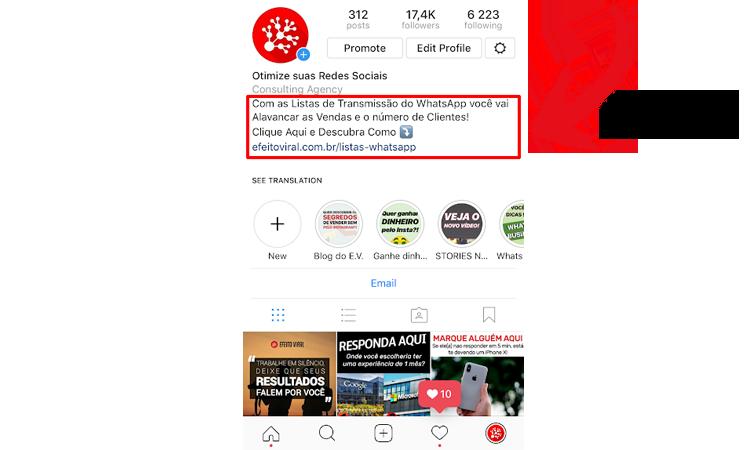 Instagram Biografia: Dicas de como usar a Bio do Instagram